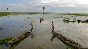 fishing in ricefields_149.jpg